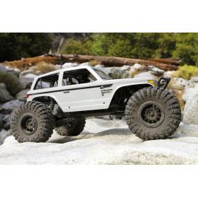 Wraith Spawn 4WD RTR 1:10