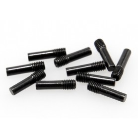 Screw Shaft M3x2.5x11mm...