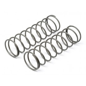 Big Bore Shock Spring...