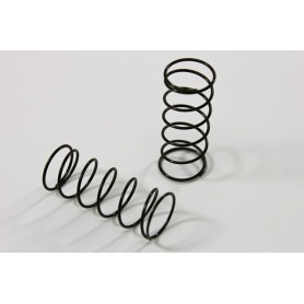 """""""Big Bore"""" Damper Spring..."
